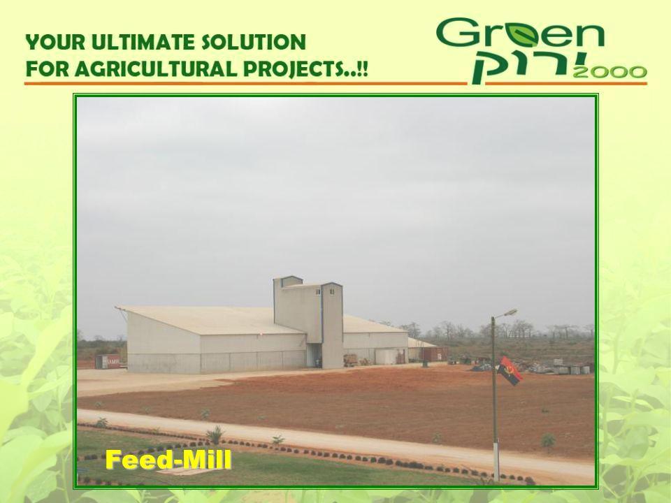 Feed-Mill
