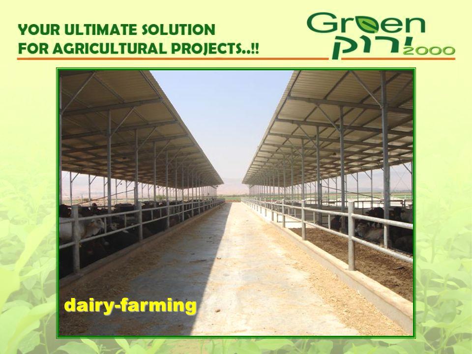 dairy-farming