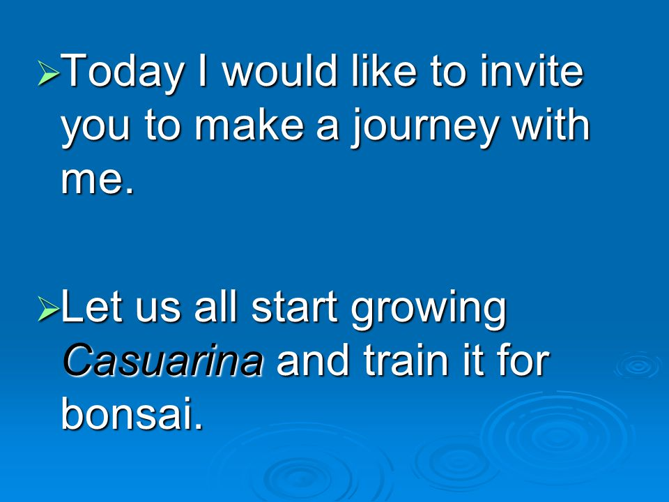 Today I would like to invite you to make a journey with me. Today I would like to invite you to make a journey with me. Let us all start growing Casua