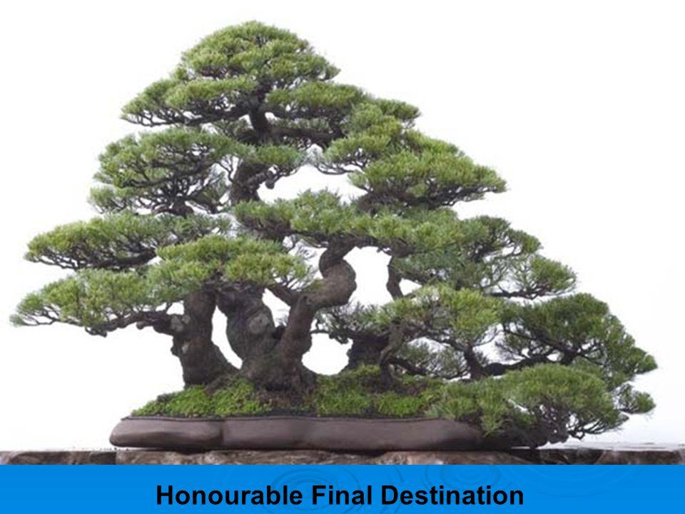 Honourable Final Destination