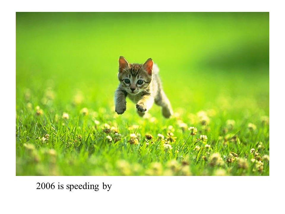 2006 is speeding by