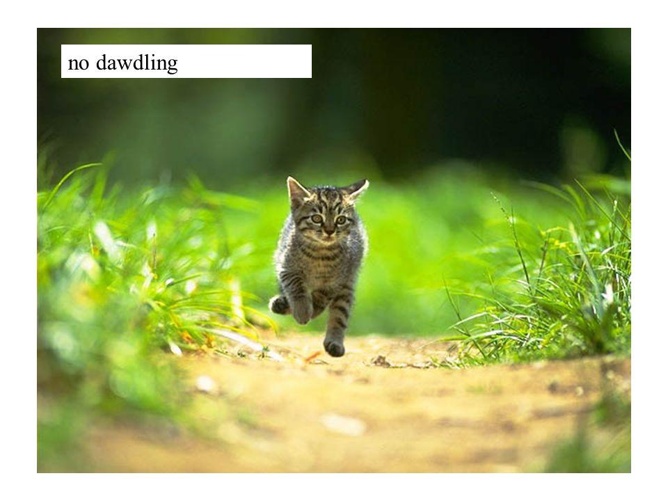 no dawdling