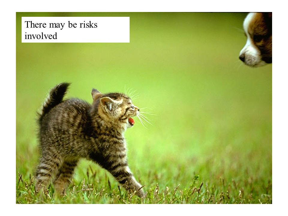 There may be risks involved