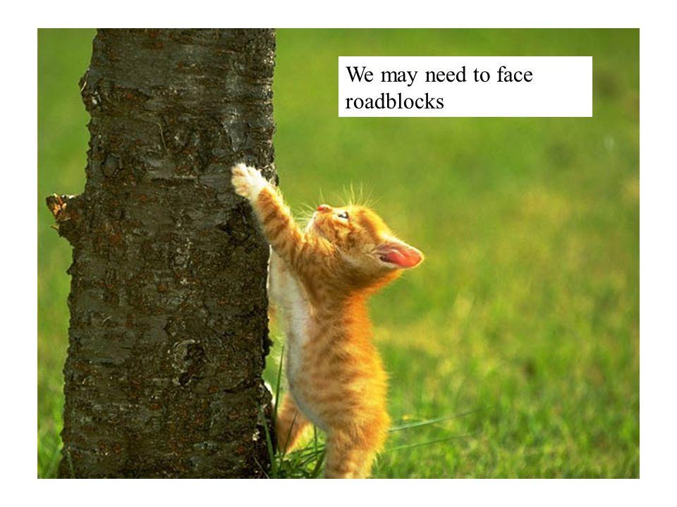 We may need to face roadblocks