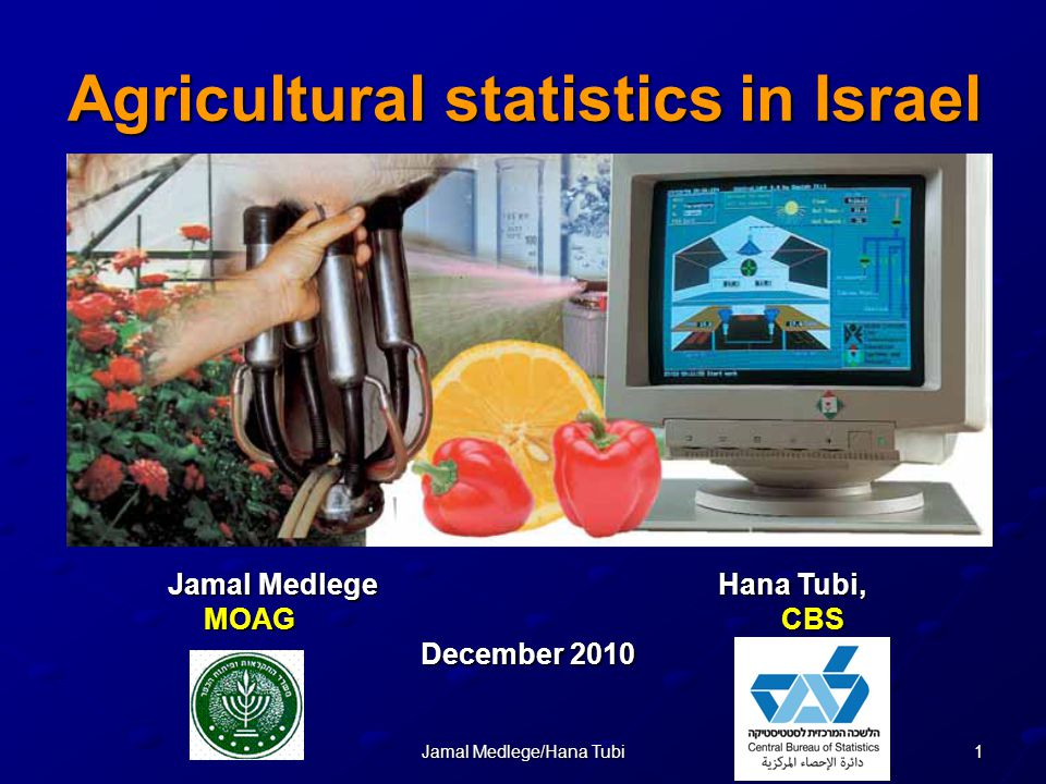 2Jamal Medlege/Hana Tubi overview The Israeli agriculture plays a significant role as the major food supplier for the local market.