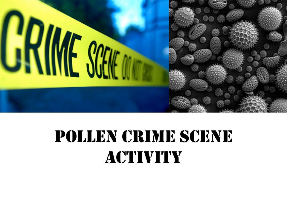 Pollen Crime Scene Activity