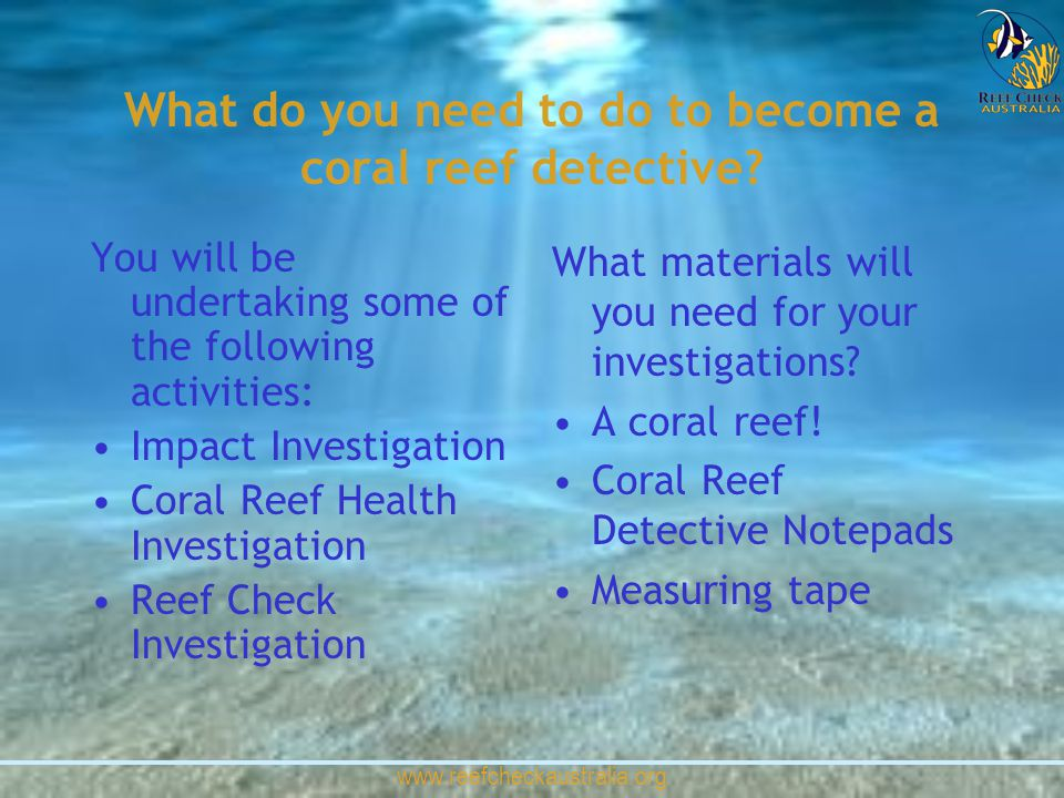 www.reefcheckaustralia.org What do you need to do to become a coral reef detective? You will be undertaking some of the following activities: Impact I
