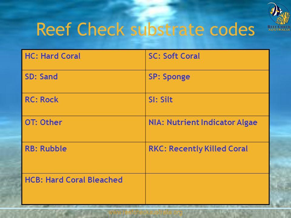 www.reefcheckaustralia.org HC: Hard CoralSC: Soft Coral SD: SandSP: Sponge RC: RockSI: Silt OT: OtherNIA: Nutrient Indicator Algae RB: RubbleRKC: Rece
