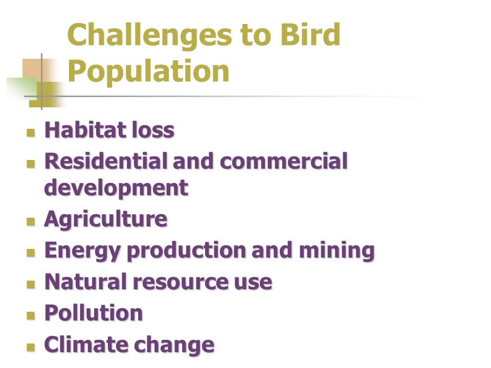 Challenges to Bird Population Habitat loss Habitat loss Residential and commercial development Residential and commercial development Agriculture Agriculture Energy production and mining Energy production and mining Natural resource use Natural resource use Pollution Pollution Climate change Climate change