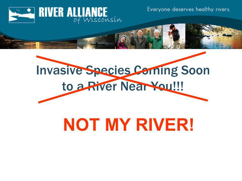 Invasive Species Coming Soon to a River Near You!!! NOT MY RIVER!