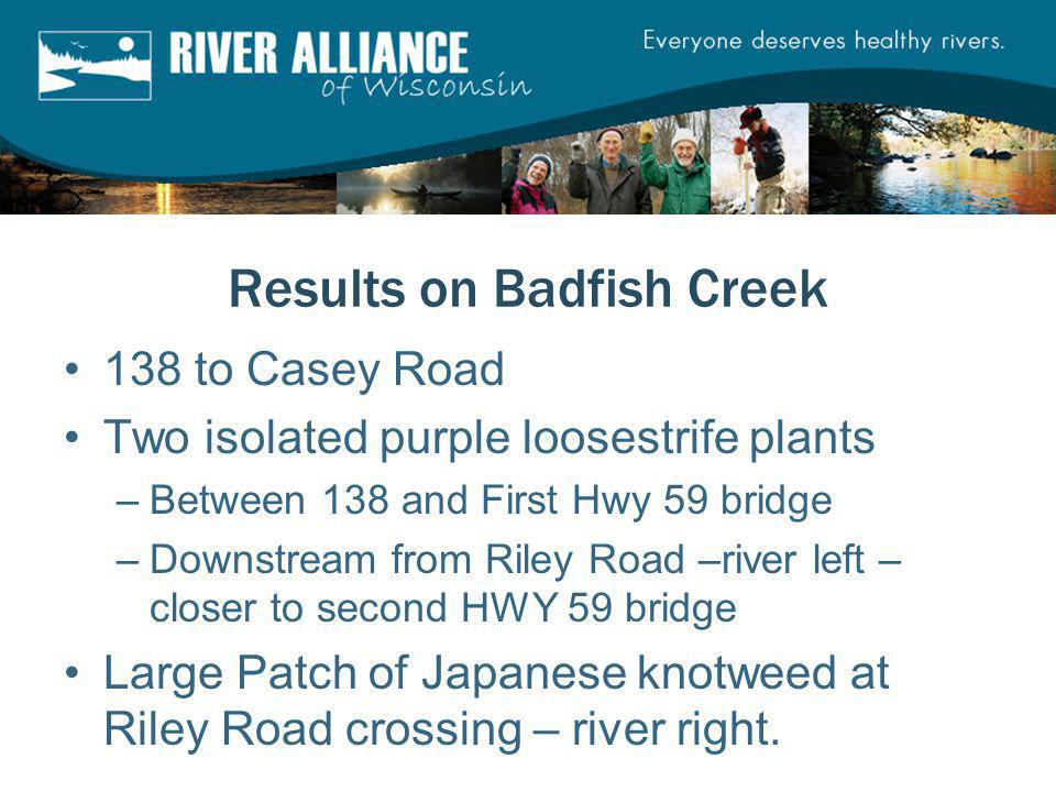 Results on Badfish Creek 138 to Casey Road Two isolated purple loosestrife plants –Between 138 and First Hwy 59 bridge –Downstream from Riley Road –ri