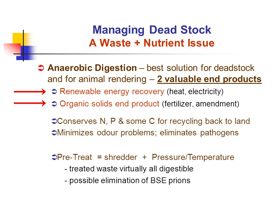 Anaerobic Digestion – best solution for deadstock and for animal rendering – 2 valuable end products Renewable energy recovery (heat, electricity) Organic solids end product (fertilizer, amendment) Managing Dead Stock A Waste + Nutrient Issue Pre-Treat = shredder + Pressure/Temperature - treated waste virtually all digestible - possible elimination of BSE prions Conserves N, P & some C for recycling back to land Minimizes odour problems; eliminates pathogens