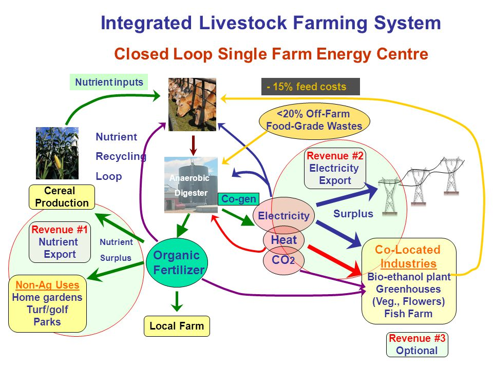 Revenue #2 Electricity Export Revenue #1 Nutrient Export Integrated Livestock Farming System Closed Loop Single Farm Energy Centre Local Farm Organic