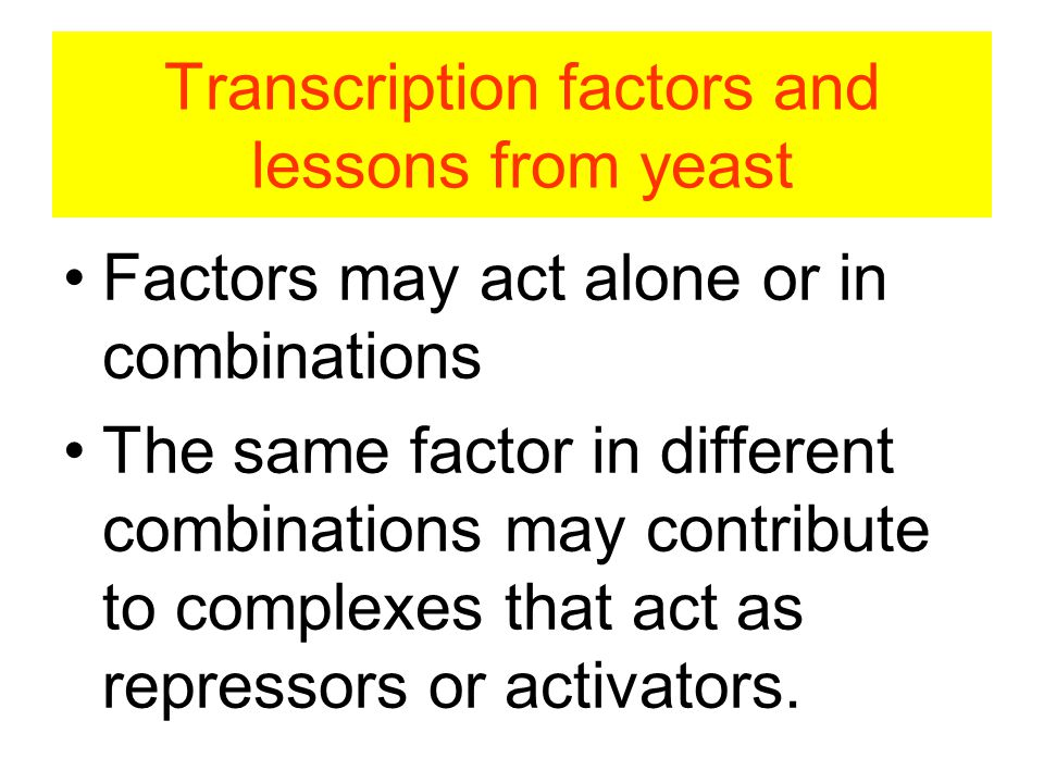 Transcription factors and lessons from yeast Factors may act alone or in combinations The same factor in different combinations may contribute to complexes that act as repressors or activators.