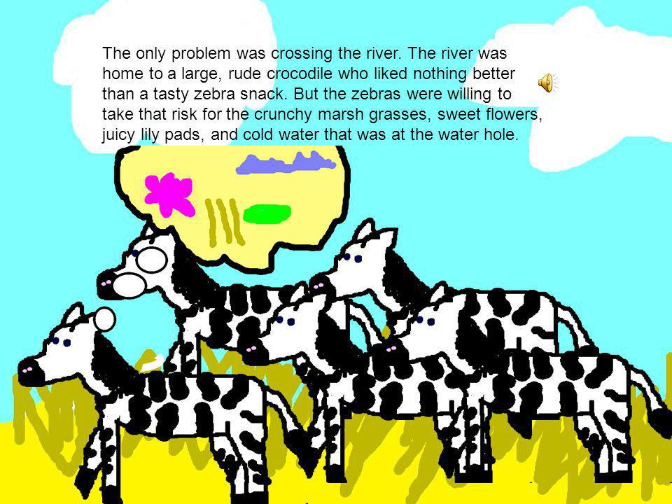 One day on the African savannah, the zebras were crossing the hot plain to get to the water hole on the other side of the river.