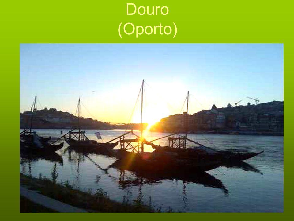 Douro (Oporto)
