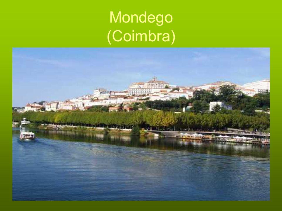 Mondego (Coimbra)