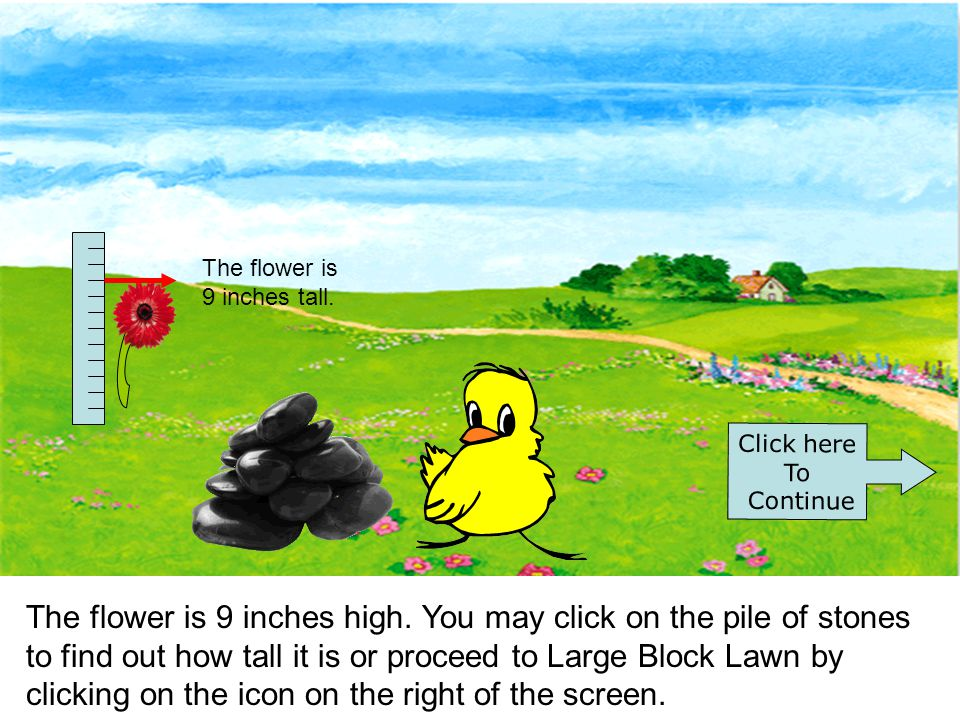 Click here To Continue The pile of rocks is 10 inches high The pile of rocks is 10 inches high. You may click on the flower to find out how tall it is