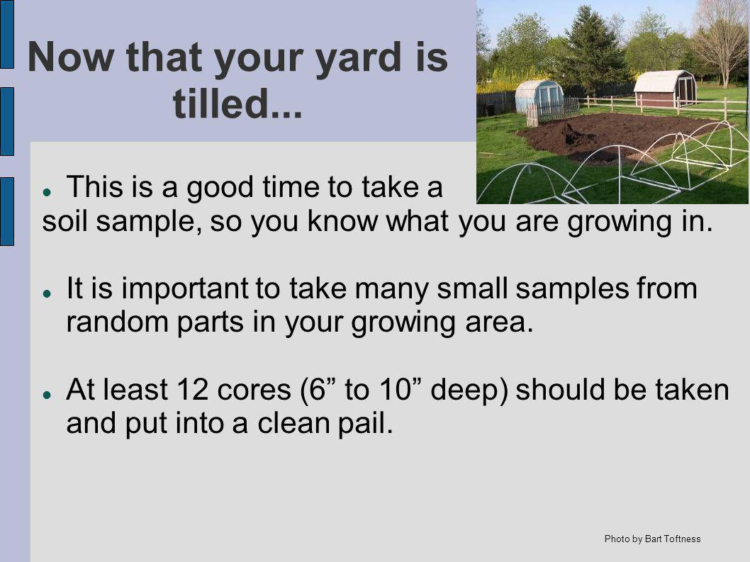 Now that your yard is tilled...