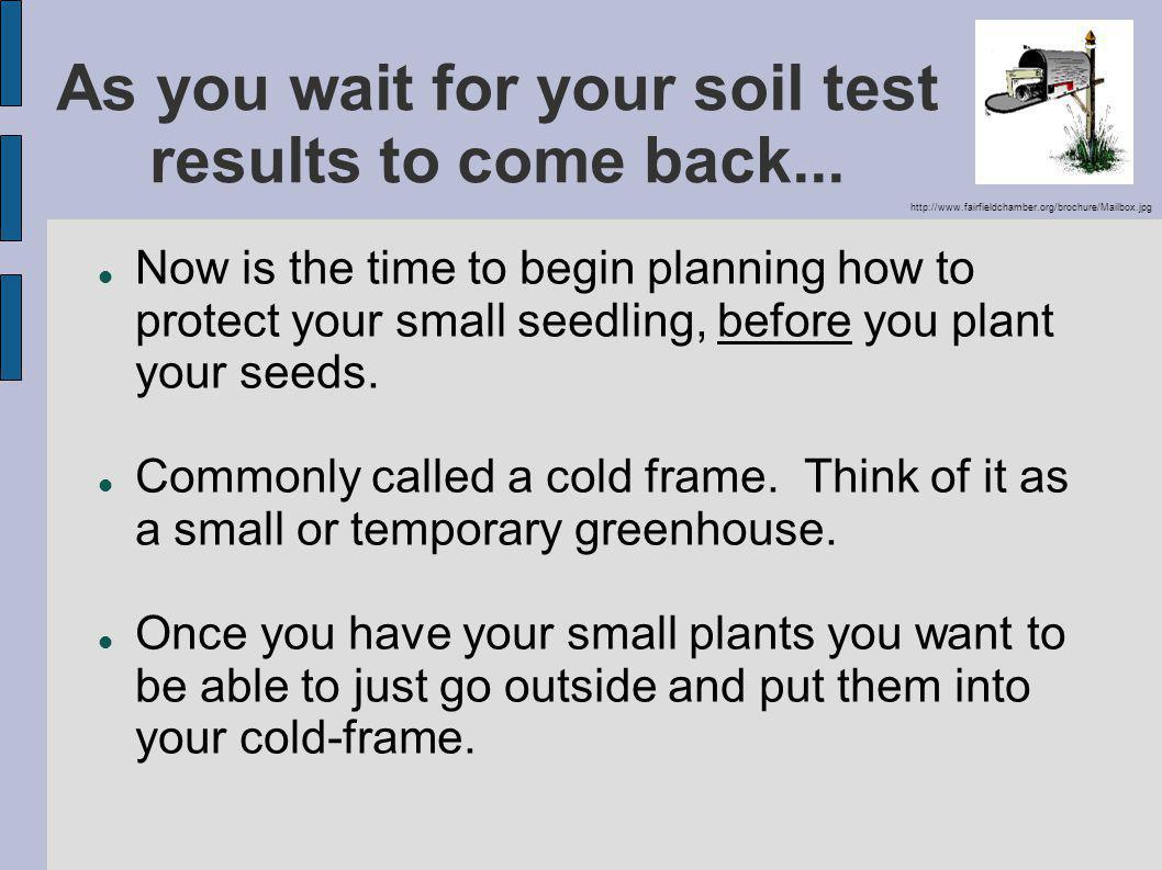 As you wait for your soil test results to come back...
