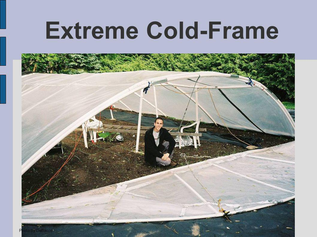 Extreme Cold-Frame Photo by DeBacco