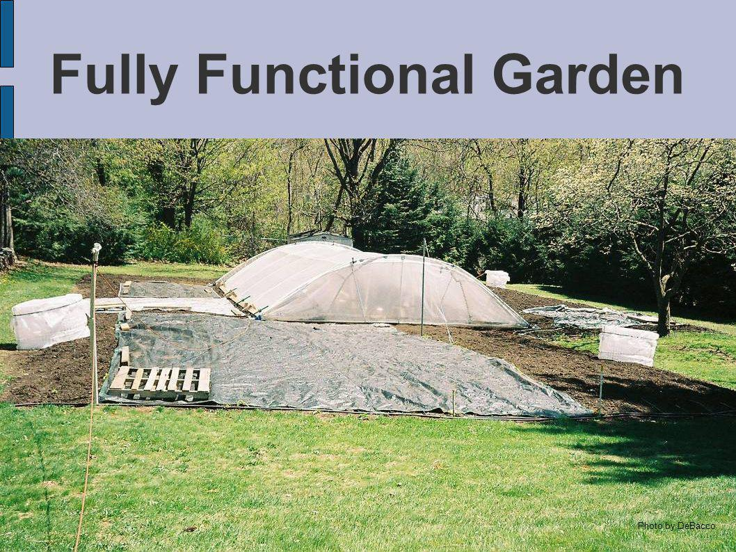 Fully Functional Garden Photo by DeBacco