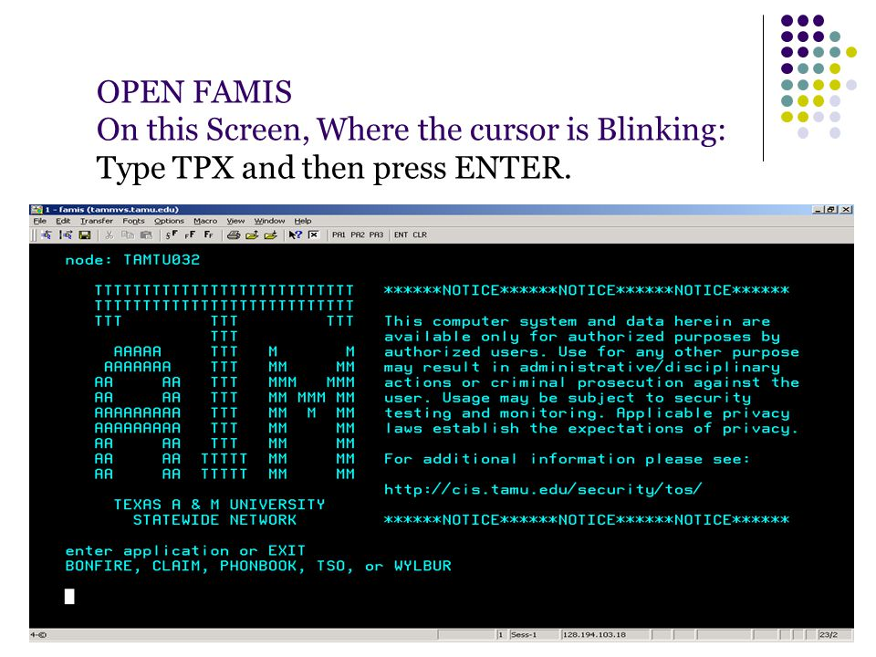 OPEN FAMIS On this Screen, Where the cursor is Blinking: Type TPX and then press ENTER.