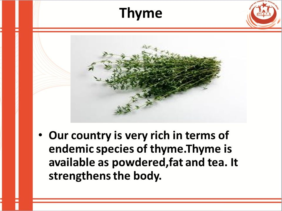 Thyme Our country is very rich in terms of endemic species of thyme.Thyme is available as powdered,fat and tea.