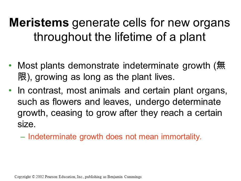 Most plants demonstrate indeterminate growth ( ), growing as long as the plant lives.