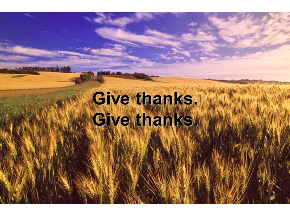 Give thanks. Give thanks.