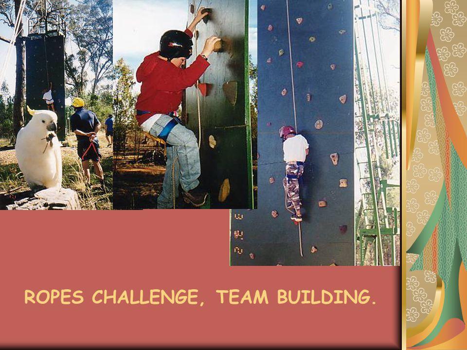 ROPES CHALLENGE, TEAM BUILDING.