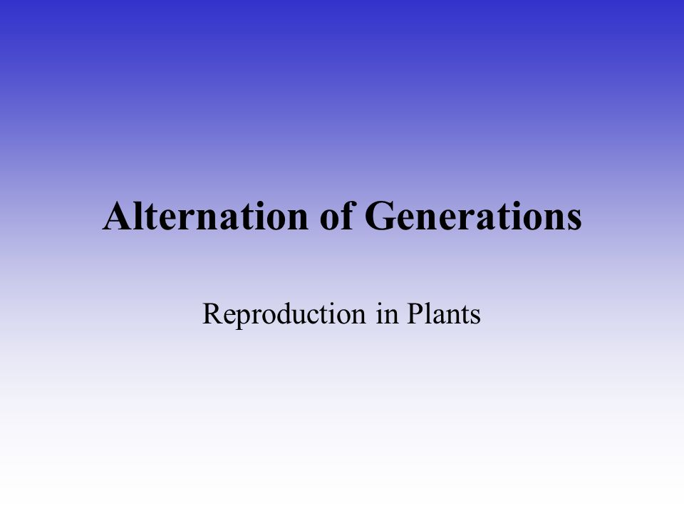 Alternation of Generations Reproduction in Plants
