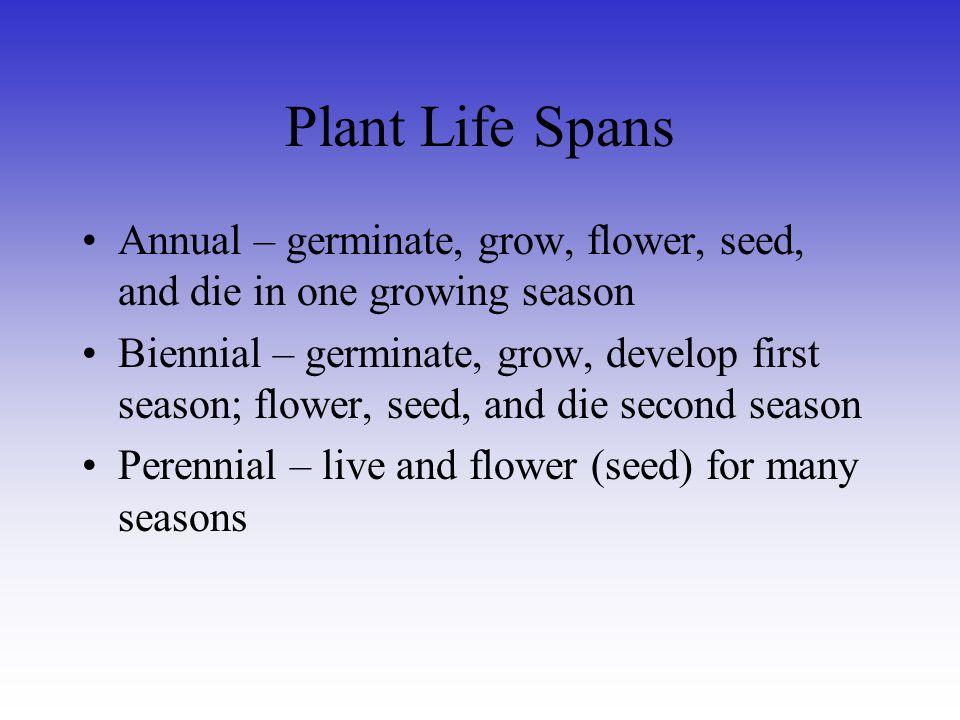 Plant Life Spans Annual – germinate, grow, flower, seed, and die in one growing season Biennial – germinate, grow, develop first season; flower, seed,