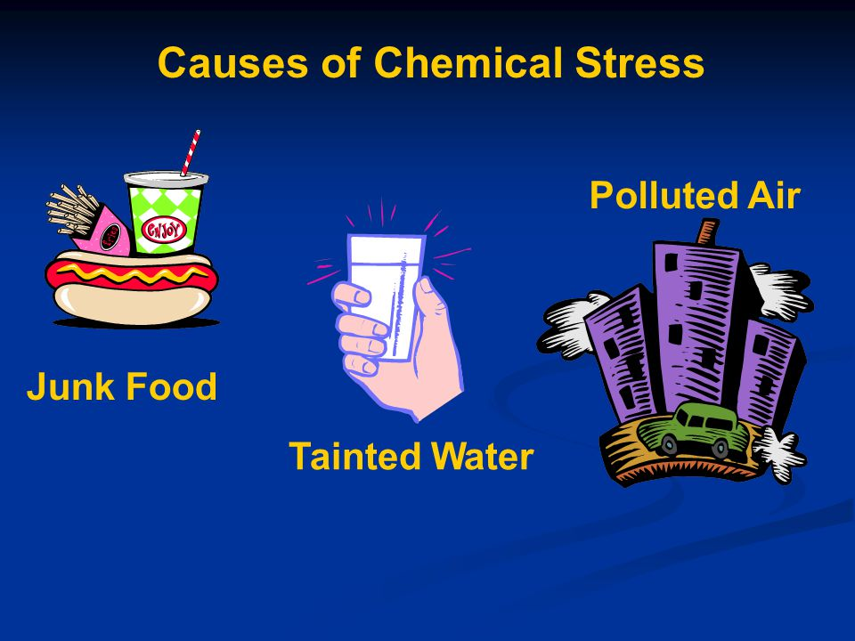 Polluted Air Tainted Water Junk Food Causes of Chemical Stress