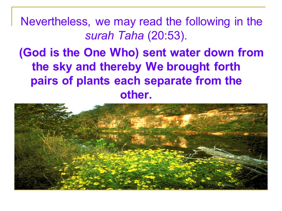 Nevertheless, we may read the following in the surah Taha (20:53). (God is the One Who) sent water down from the sky and thereby We brought forth pair