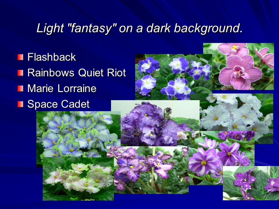 Light fantasy on a dark background. Flashback Rainbows Quiet Riot Marie Lorraine Space Cadet