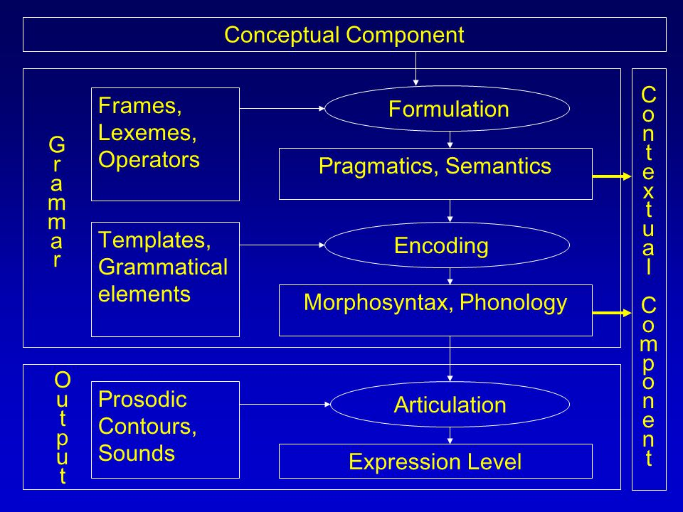 Conceptual Component ContextualComponentContextualComponent Articulation Expression Level Prosodic Contours, Sounds Frames, Lexemes, Operators Templates, Grammatical elements Pragmatics, Semantics Formulation Encoding Morphosyntax, Phonology GrammarGrammar OutputOutput