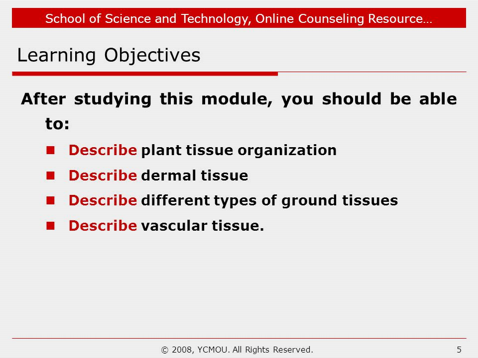 School of Science and Technology, Online Counseling Resource… What You Learn-2… You have learnt that… Ground tissue is made of parenchyma, collenchyma and sclerenchyma.