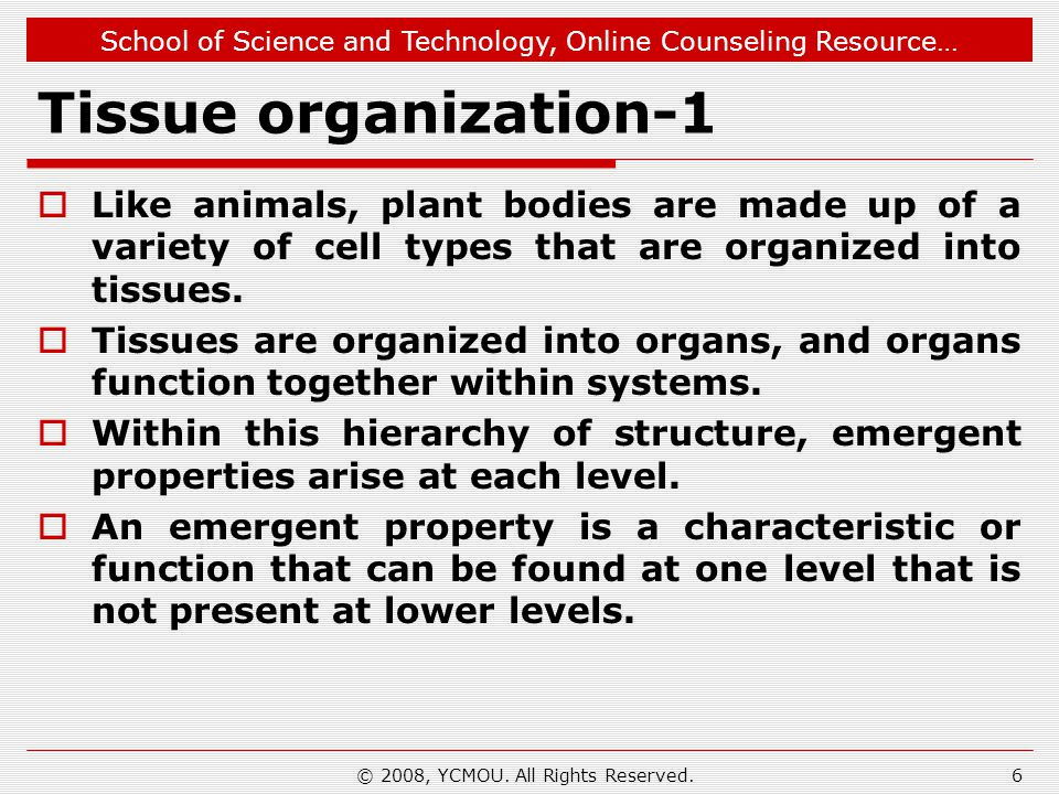 School of Science and Technology, Online Counseling Resource… Tissue organization-1 Like animals, plant bodies are made up of a variety of cell types