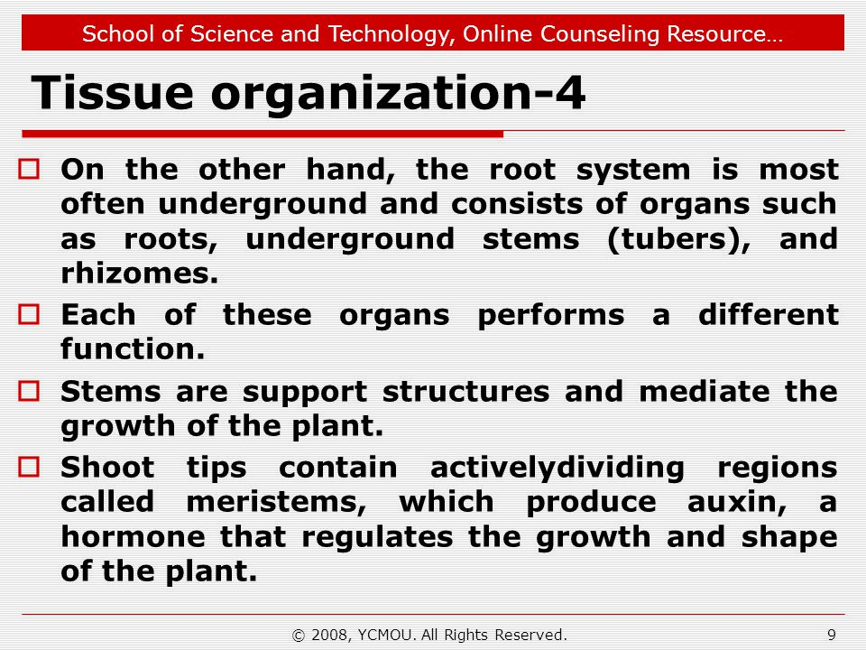 School of Science and Technology, Online Counseling Resource… Tissue organization-5 © 2008, YCMOU.