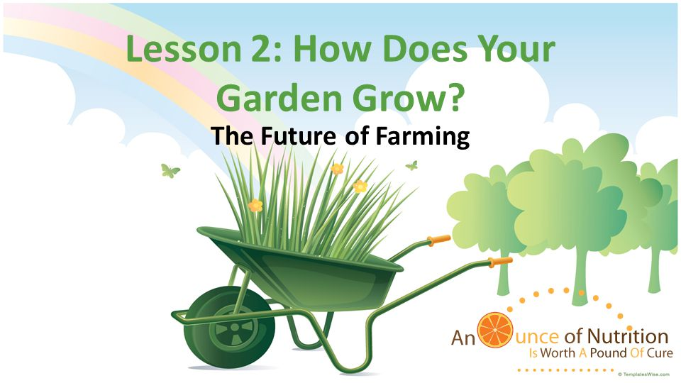 Current Trend in Farming Simple Farming – School gardens Steps for planting a garden