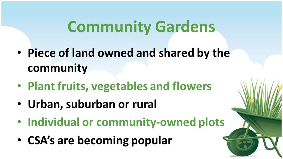 Community Gardens Piece of land owned and shared by the community Plant fruits, vegetables and flowers Urban, suburban or rural Individual or community-owned plots CSAs are becoming popular