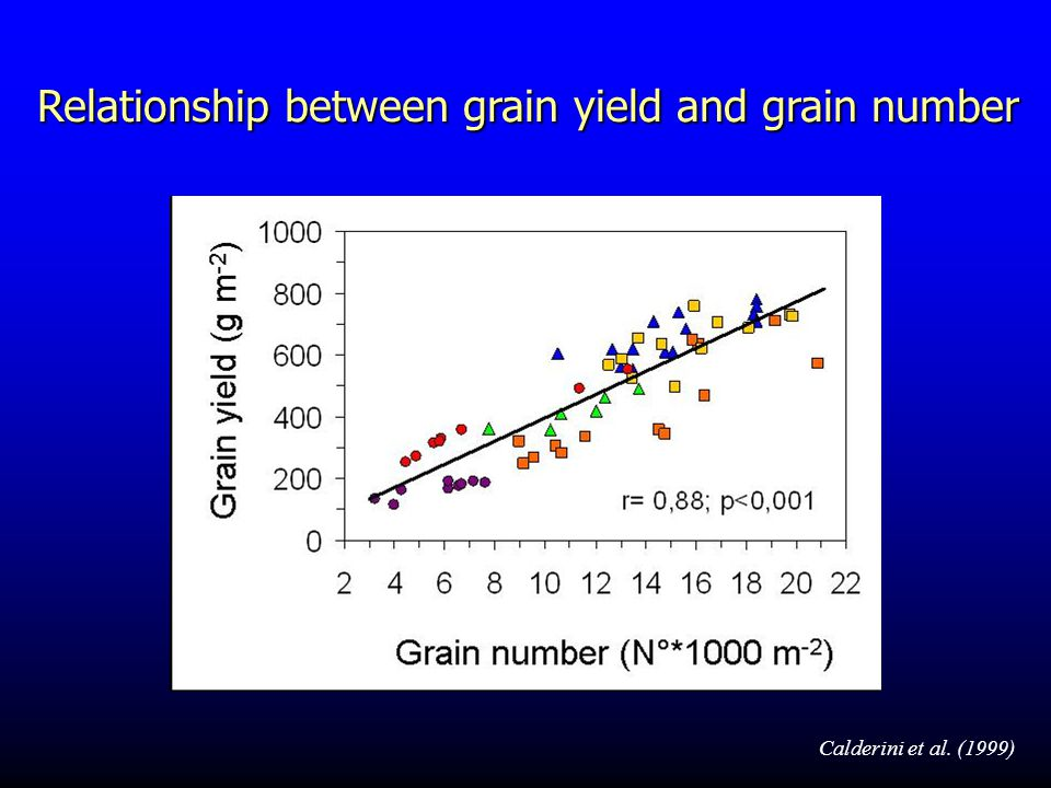 Argentina Australia India Italy Mexico UK Relationship between grain yield and grain number Calderini et al.