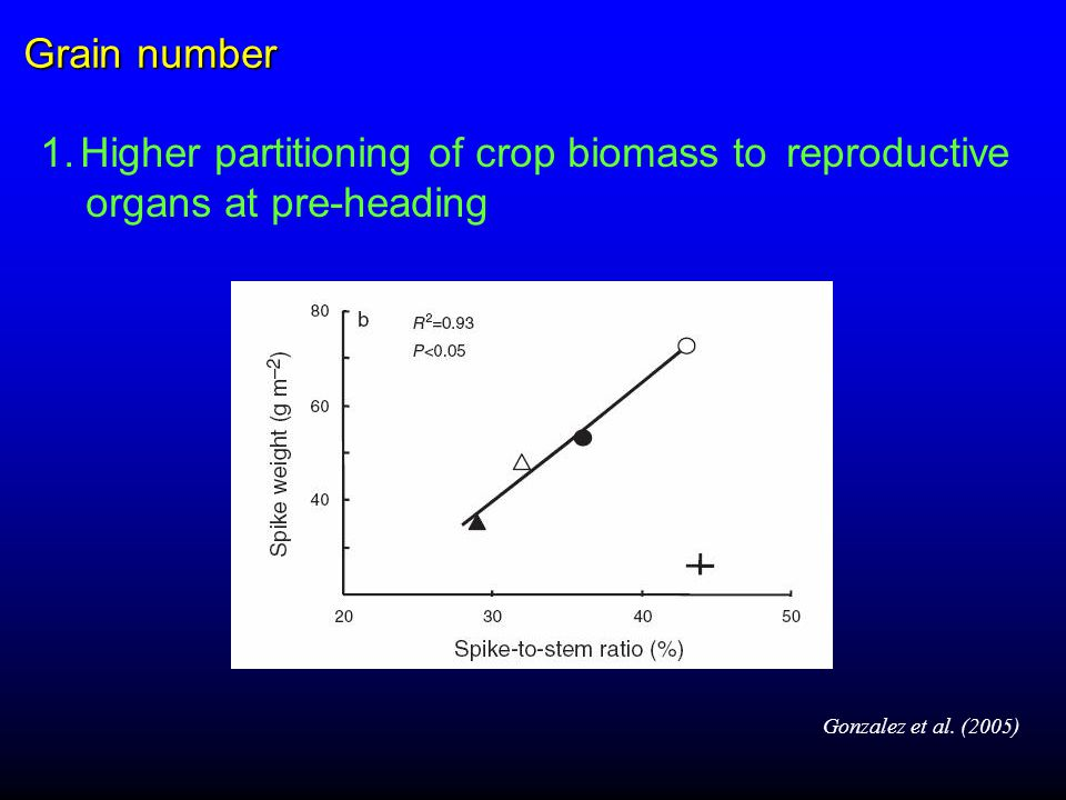1.Higher partitioning of crop biomass to reproductive organs at pre-heading Gonzalez et al.