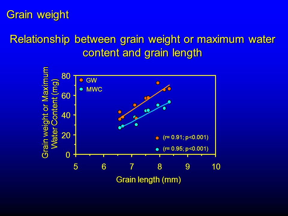 0 20 40 60 80 5678910 Grain length (mm) Grain weight or Maximum Water Content (mg) Relationship between grain weight or maximum water content and grain length GW MWC (r= 0.91; p<0.001) (r= 0.95; p<0.001) Grain weight