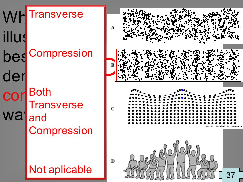 Which illustration best demonstrates compression waves? 37 Transverse Compression Both Transverse and Compression Not aplicable