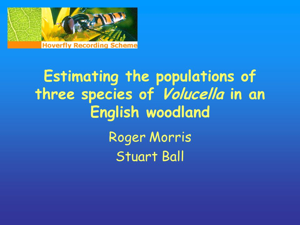 Estimating the populations of three species of Volucella in an English woodland Roger Morris Stuart Ball