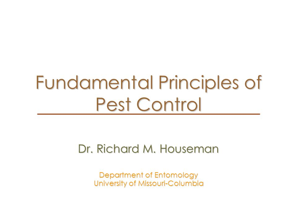 Summary Identification of the pest and an understanding of its biology is important.