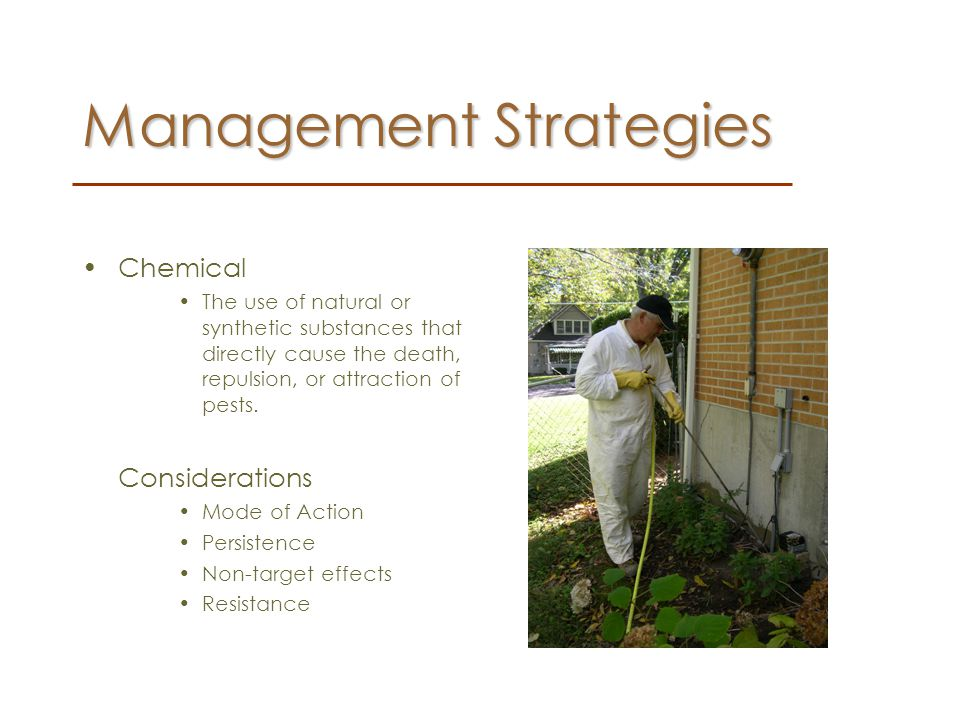 Mode of Action –The way a chemical kills a pest.