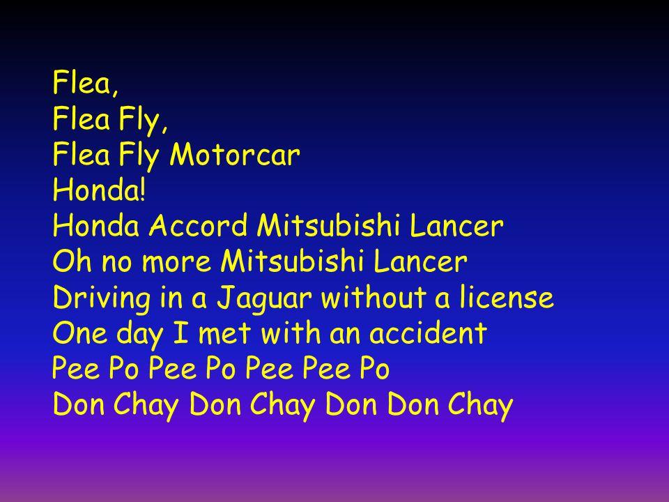 Flea, Flea Fly, Flea Fly Motorcar Honda! Honda Accord Mitsubishi Lancer Oh no more Mitsubishi Lancer Driving in a Jaguar without a license One day I m